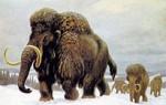 Украина - родина мамонтов
